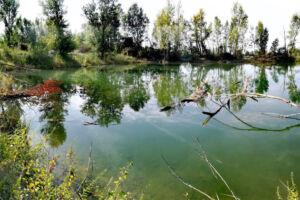 Plan d'eau de gravière de Haute-Garonne