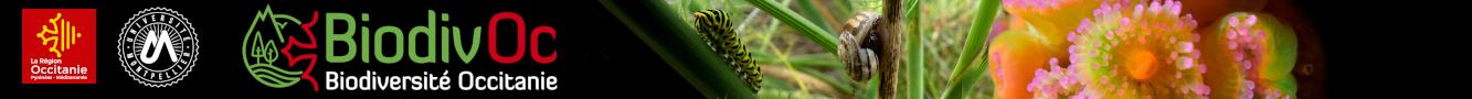 Biodivoc Logo